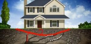 termites-350x170-Homeowner